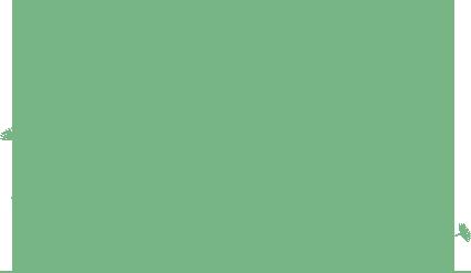 Verbis Logopedia